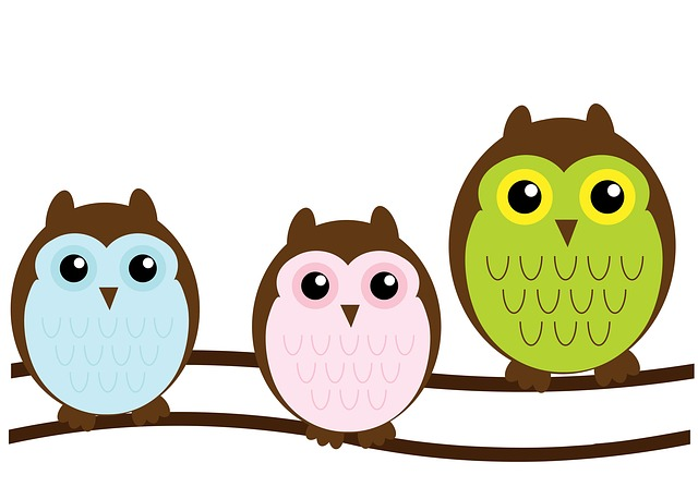 3 colorful owls sitting on a branch.
